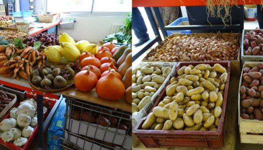 Ventre de légumes - ESAT